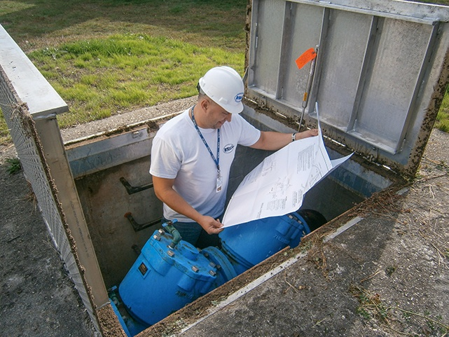 Inspecting vault with double check backflow preventer