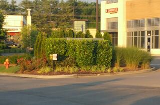 Backflow enclosures hidden by landscaping