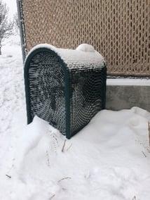 Cage Snow 3
